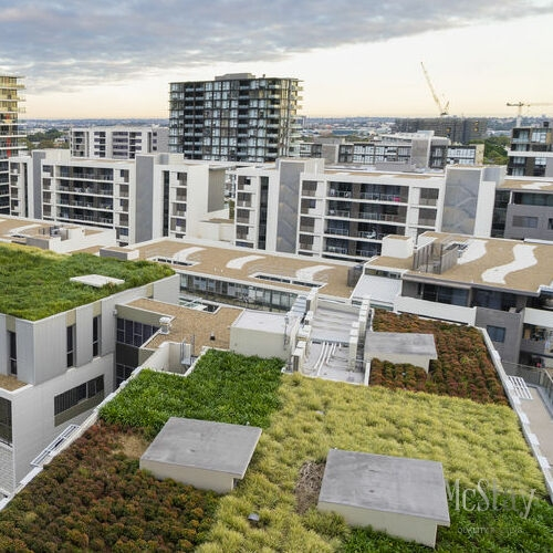 Some urban areas are beginning to incorporate green roofs as an environmentally friendly roofing solution.
