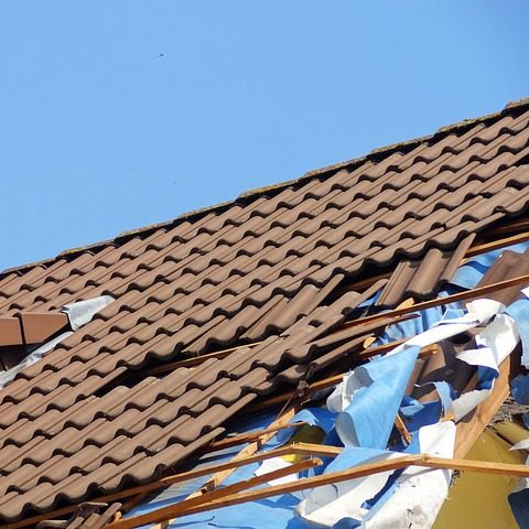 Roof with Damage